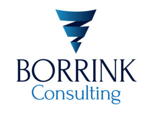Borrink Consulting Logo